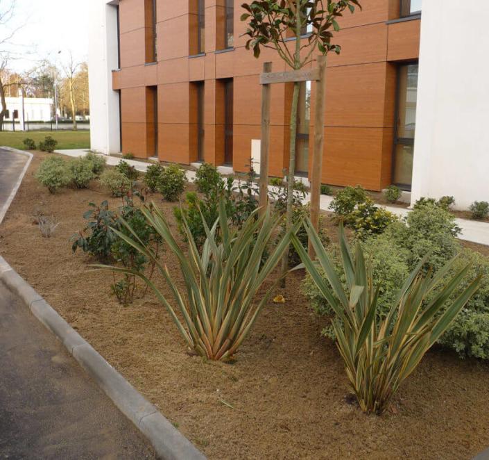 Aménagement d'espaces verts, extérieur, création de jardin pour les professionnels - Morisseau Paysagistes Nantes