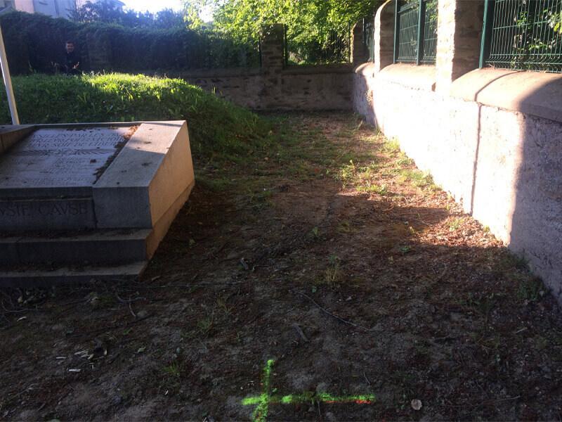 Entretien des plantes, taille d'arbustes, tonte pelouse, entretien de jardin pour les professionnels - Morisseau Paysagistes Nantes