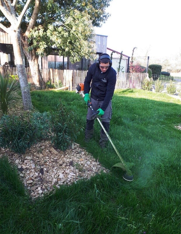 Entretien des plantes, taille d'arbustes, tonte pelouse, entretien de jardin pour les particuliers - Morisseau Paysagistes Nantes
